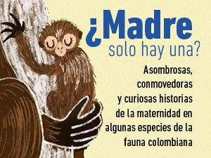 madres-evento-home-page.jpg