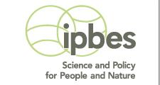IPBES Logo GREEN STRAP 2015 2