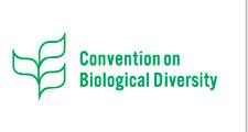 convergion biologica
